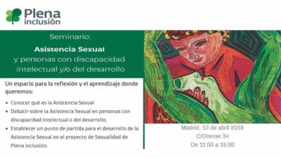 Seminario Plena Inclusión